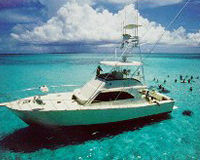 charter_snorkel
